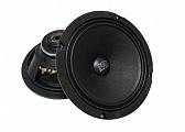 FSD audio Master 200N