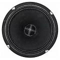 Russian Bass B200RBF